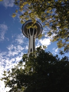 Lo Space Nidle di Seattle.