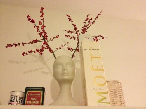 vaso di fiori viso bacche