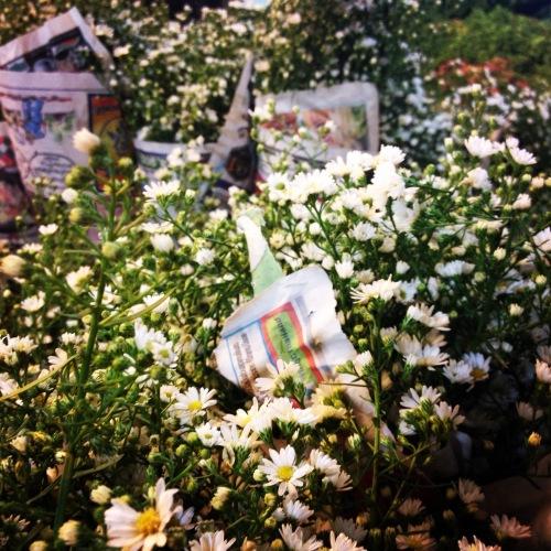 Margherite al mercato dei fiori, Bangkok @oltreilbalcone